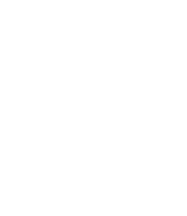 3-mani